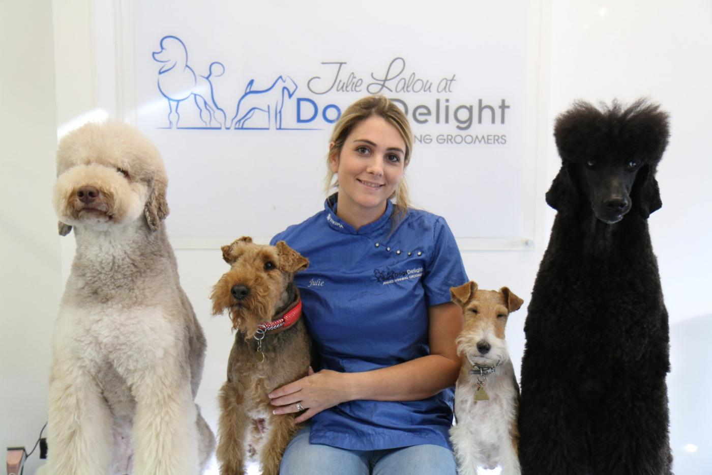Professional Qualified Dog Grooming Salon West London Dogs Delight